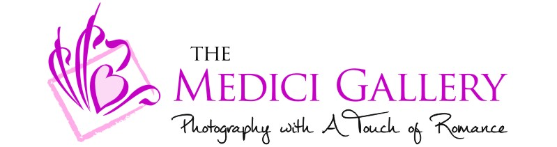 Ed Medici Gallery Productions